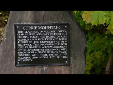 Currie Mountain | Douglas, NB