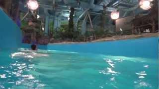 ukraine,kiev pool aqua park(, 2012-11-12T09:45:41.000Z)