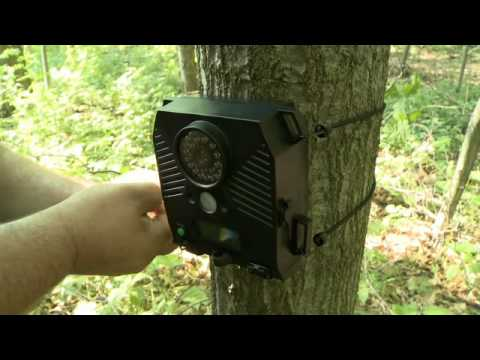 Wildgame Innovations Trail Camera With Uncle Millie Youtube