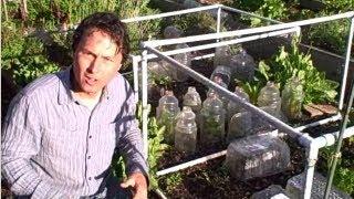 Low Cost Methods to Extend Your Growing Season in Your Vegetable Garden