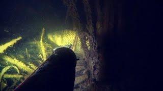 подводная охота на сазана Маныч рыбалка весна 2021 веселовское водохранилище