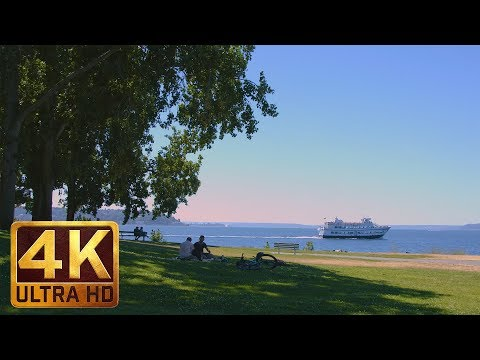 Wonderful Day in Myrtle Edwards Park in Seattle - 5 Hours City Relaxation 4K Video