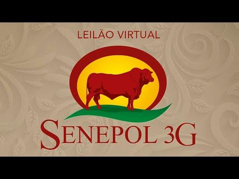Lote 43   SEPA 0450 Copy