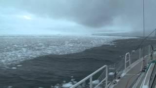 Fleur Australe : Navigation extrême en Antarctique