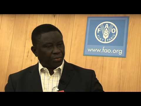 Global Soil Partnership interviews - Victor Chude