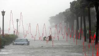 Tampa dodged Irma