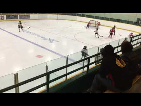 Port Credit Atom A vs Willowdale Blackhawks 02/10/2018