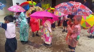 RIS   Rain walk day