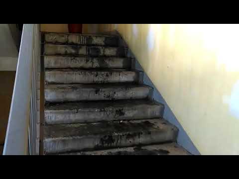 Вид изнутри, дом после пожара на Вавилова в Томске