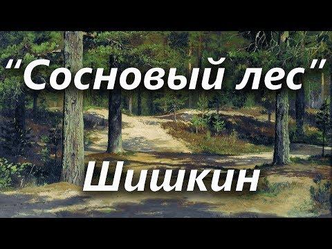 Сосновый лес, Шишкин ОБЗОРЫ КАРТИН
