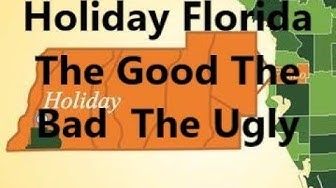 The Good The Bad The Ugly ~ Living In Holiday Florida