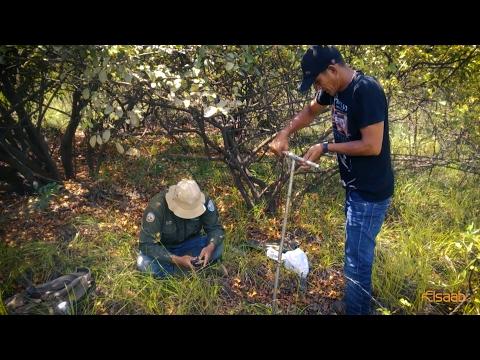 Soil Survey and Land Evaluation