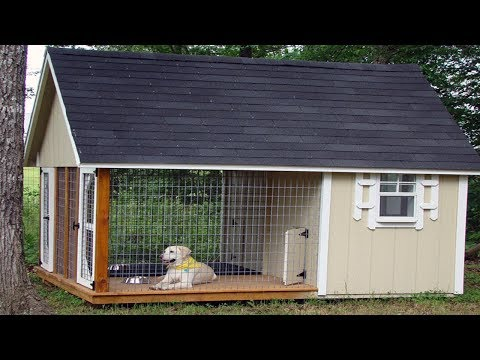 Large Dog House Building Plans