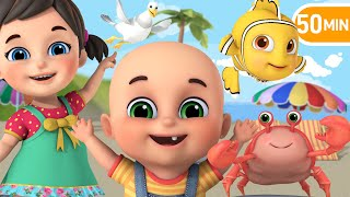 Beach Song | Lets learn Sea Animals! |  More Nursery Rhymes & Baby songs | Kids Cartoon - Jugnu Kids