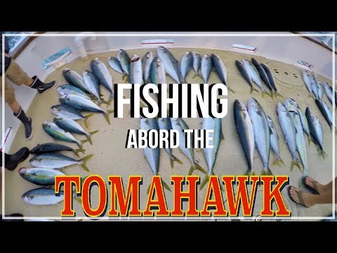 Yellowtail Fishing Abord The Tomahawk (Fisherman's Landing)