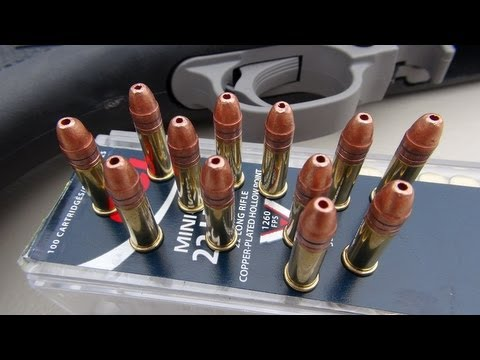 .22 LR CCI MINI-MAG 36 gr Ballistic Gel Test