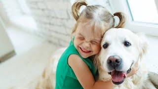 TOP 10 FRIENDLIEST DOG BREEDS #shorts