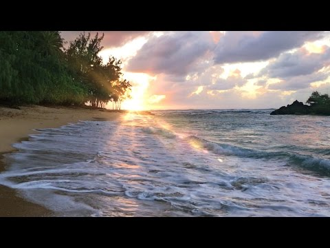 Hawaii Ocean Waves White Noise | Sleep, Study, Soothe a Baby, Insomnia Relief | Beach Sounds 10 Hrs
