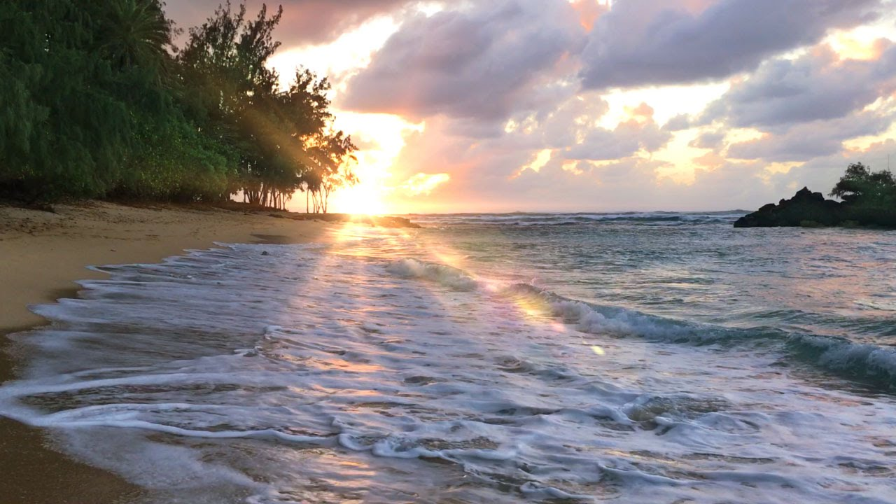 Hawaii Ocean Waves White Noise Sleep Study Soothe A Baby Insomnia Relief Beach Sounds 10 Hrs You
