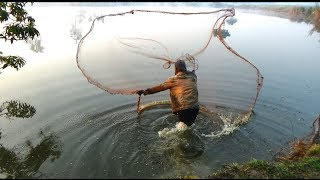 Net Fishing | Catching Fish With Cast Net | Net Fishing in the village (Part-115)