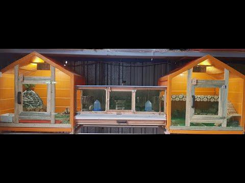 Saray - Bıldırcın Kafesi  Hemde  Saray Gibi