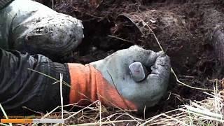 🔴 Раскопки по войне Поиск без вести пропавших солдат 2.09.17
