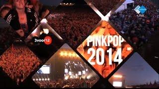 Pinkpop 2014: The Boxer Rebellion