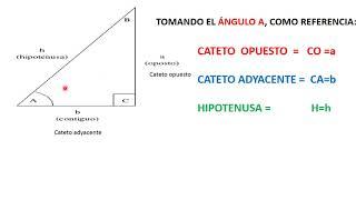cateto opuesto, adyacente  e hipotenusa