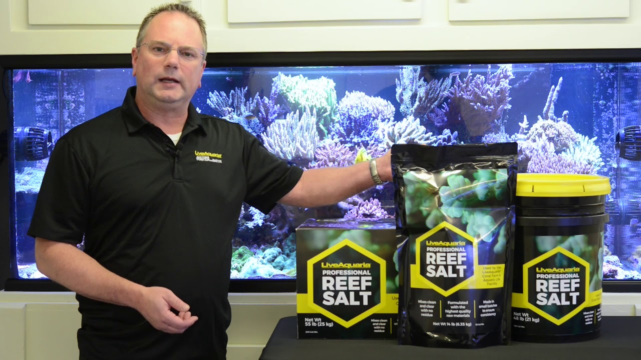 kevin kohen introduces liveaquaria professional reef salt youtube