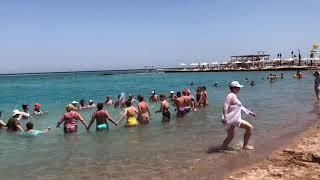 Аквааэробика в море Отдых в отеле Лабранда Роял Макади Labranda royal makadi 5 Египет 2021