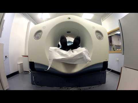Cardiac CT scan