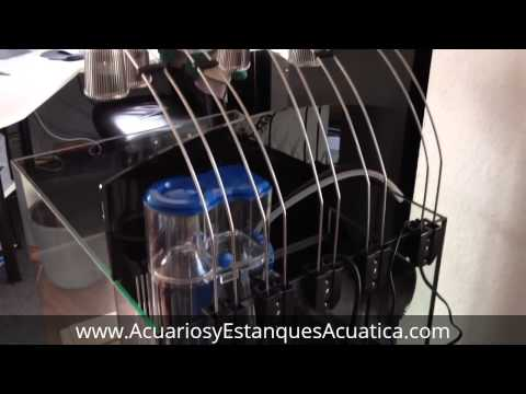 Nano reef marino Aquamedic Blenny 80 litros