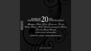 Concerto in D minor, Op.47: II. Adagio di molto