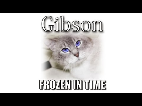 Thumbnail: Gibson's Memorial - Frozen In Time