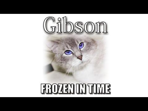 Gibson's Memorial - Frozen In Time