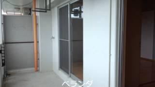 石垣市新川にあります2LDKのお部屋。バス・トイレ別、オールフロー...