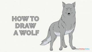 How to Draw a Wolf in a Few Easy Steps: Drawing Tutorial for Kids and Beginners