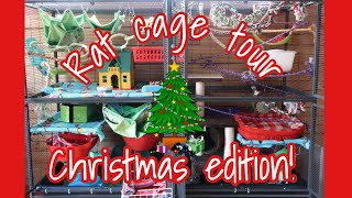 Christmas Double Critter Nation Rat Cage Tour || 12 Days of Petmas! thumbnail