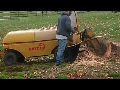 Stump Grinding with RG 90 RAYCO  PART 1 OF 2