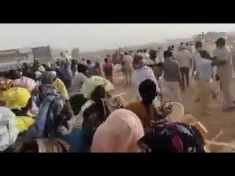 Meeting APR / Podor : Après Dakar, les nervis sèment la désolation au Fouta