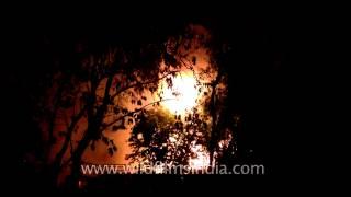 Raging fire at a Delhi farmhouse