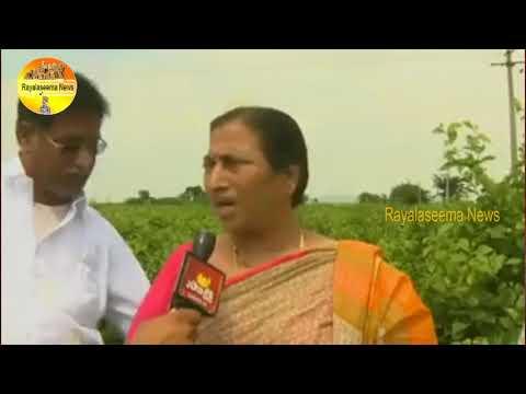 అమరావతిలో రైతుల కన్నీళ్ళు చూసి షోక్ అయిన వరల్డ్ బ్యాంకు అధికారులు Rayalaseema News