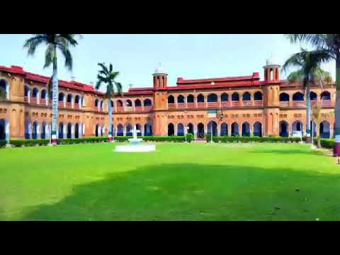 AMU campus a charm view