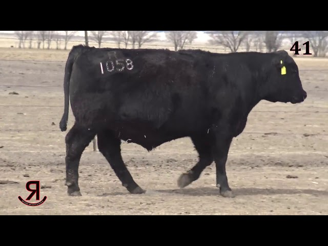 Reverse Rocking R Ranch Lot 41