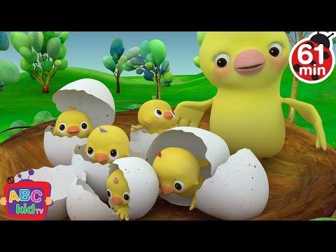 Five Little Birds | + More Nursery Rhymes & Kids Songs - ABCkidTV