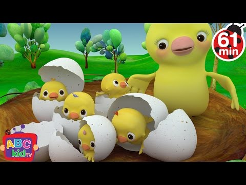 Five Little Birds  + More Nursery Rhymes & Kids Songs  ABCkidTV
