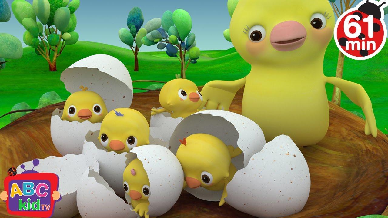 Animated Bird For Kids