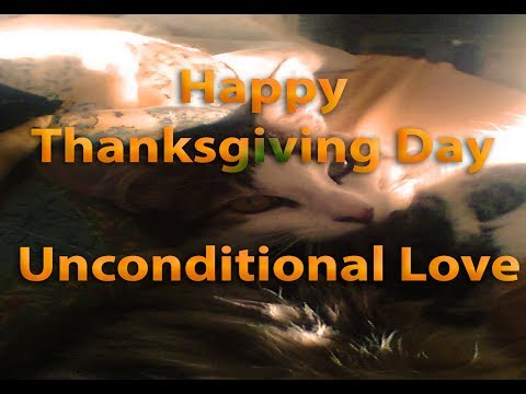 Happy Thanksgiving Day - Unconditional Love