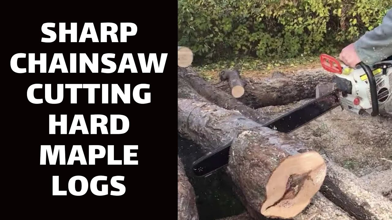 Image result for chainsaw cutting