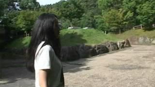 岐阜公園 金華山麓で発掘された、織田信長居館跡です。巨大な石畳が見つ...